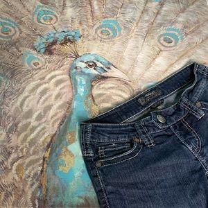 Silver Jeans Tuesday Darkwash Bootcut Denim